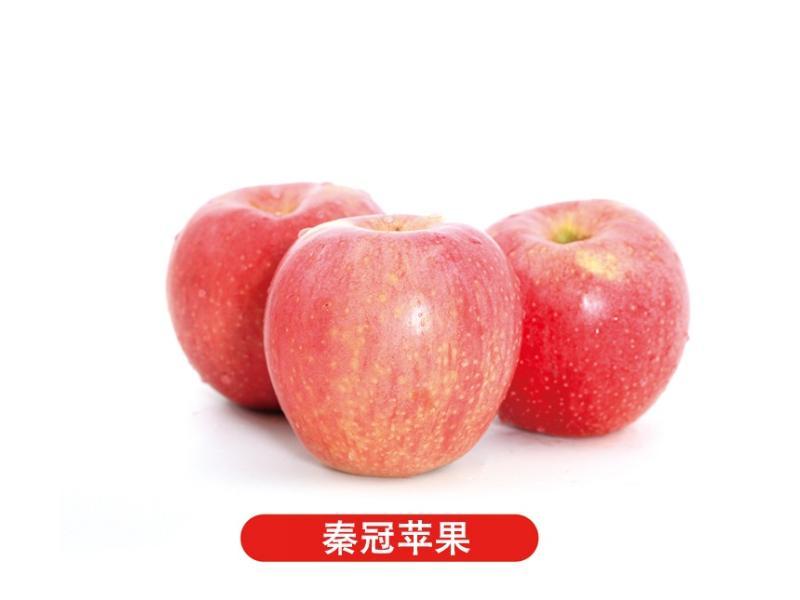 山東蘋果哪里有|品質好的蘋果出售