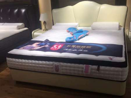 陕西陕西椰棕床垫定做-加得宝专业的西安床垫