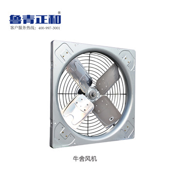 受欢迎的牛舍风机推荐_拢风筒风机生产厂家