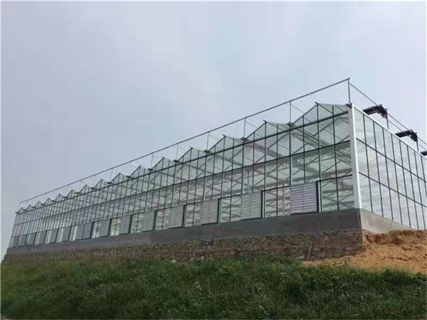 双层智能玻璃温室建造特点【智能玻璃温室建造厂家哪家好】利广