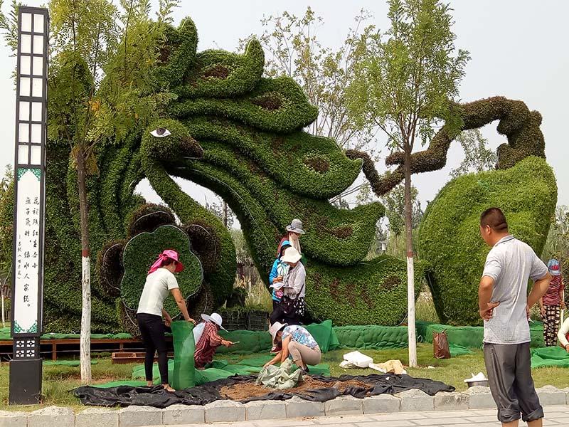 五色草造型厂家_提供不错的城市美化工程