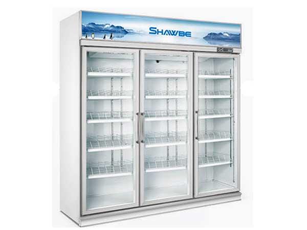 冰洋制冷饮料展示柜品牌推荐_小型饮料展示柜