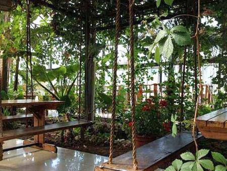 生态餐厅建造