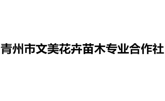 青州△市文美花卉苗木专业合作社