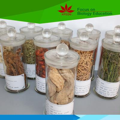 优良的中药生药标本,就在红叶教学仪器 郑州生药标本价格