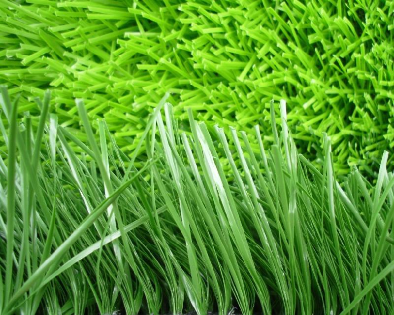 广东人造草坪供应商_塑胶跑道价格-惠州市泓冠达体育设施有限公