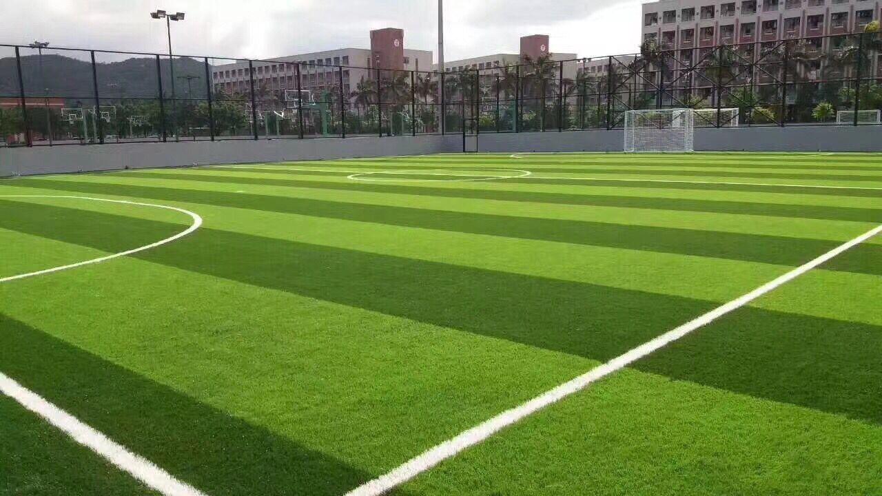 惠州足球场人造草坪_惠州人造草坪哪里有-惠州泓冠达体育