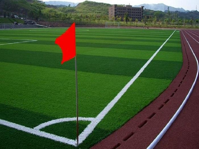 中山足球场人造草坪_供应广东成活率高的人造草坪