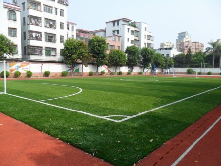 福建足球场人造草坪|想要品质好的人造草坪就来泓冠达体育设施