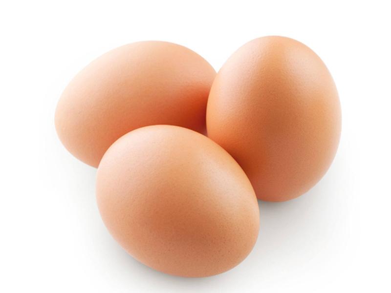哪儿批发的粉皮鸡蛋优惠_粉皮鸡蛋零售网点