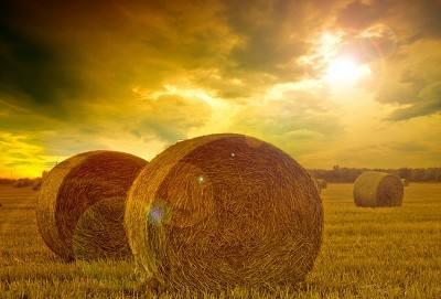 海拉爾海征農牧機械-想買優惠的捆草機,就來呼倫貝爾海征汽車