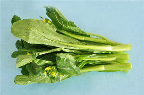 博罗蔬菜配送——【荐】深圳专业的新鲜蔬菜的配送