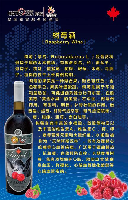 天使蓝莓酒销售高品质树莓酒供应-树莓酒批售