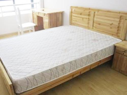 出租房床墊供應廠家|東莞價格合理的出租房床墊要到哪買