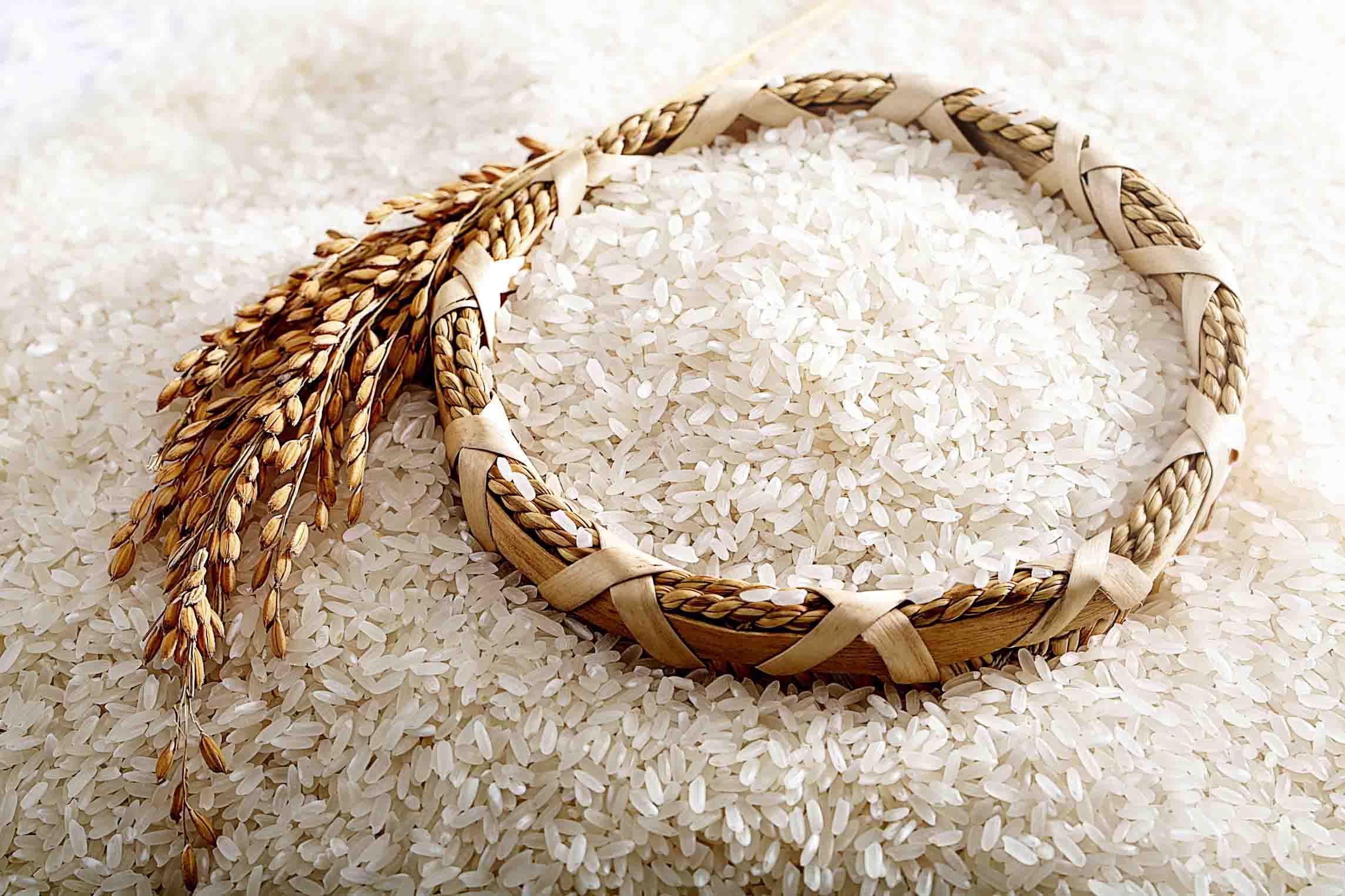 美华富硒_专业富硒大米供应商 天然的富硒大米