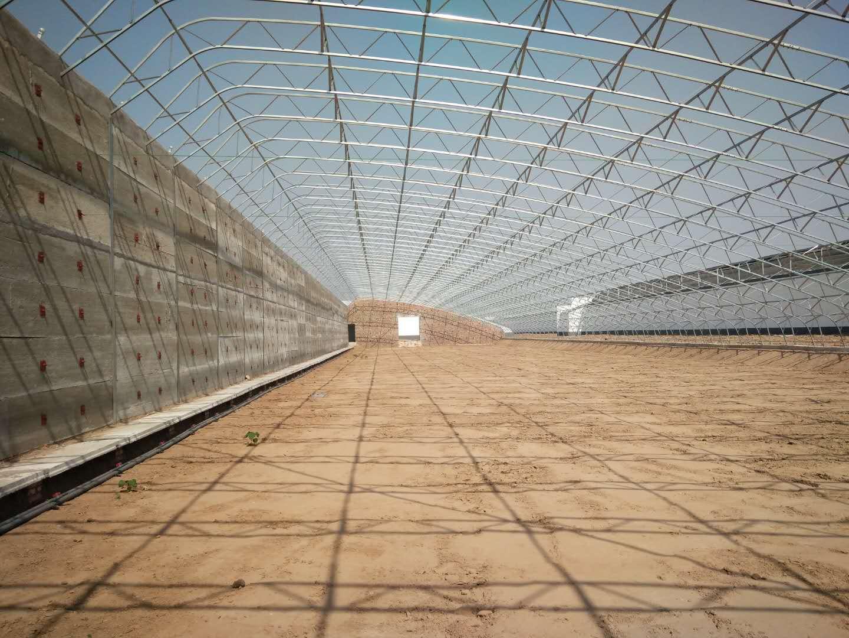高温棚专业设计建造 厂家批发高温棚