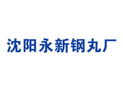 沈陽市沈北新區永新鋼丸廠