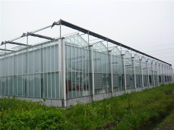 智能温室大棚建设特点-农业温室建设工程-现代农业温室成本造价