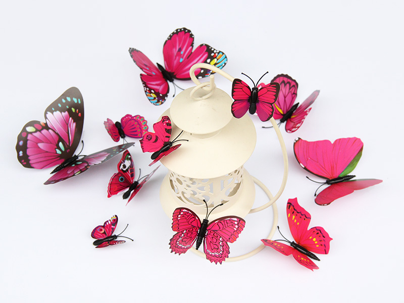 五色系单层蝴蝶套装专业报价,各类五色系单层蝴蝶套装
