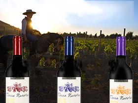 法国进口红酒批发