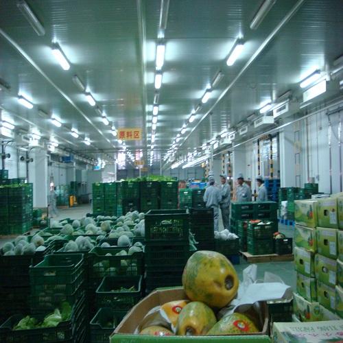 源生食品配送公司哪家口碑好,安全可靠的源生食品配送