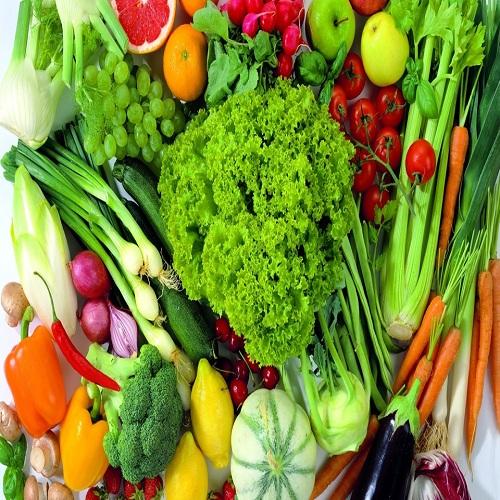 源生蔬菜配送