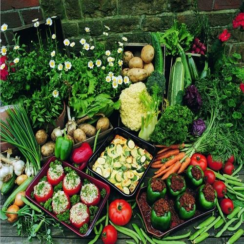 珠海地区优质的源生蔬菜配送服务 -新鲜食材配送商家