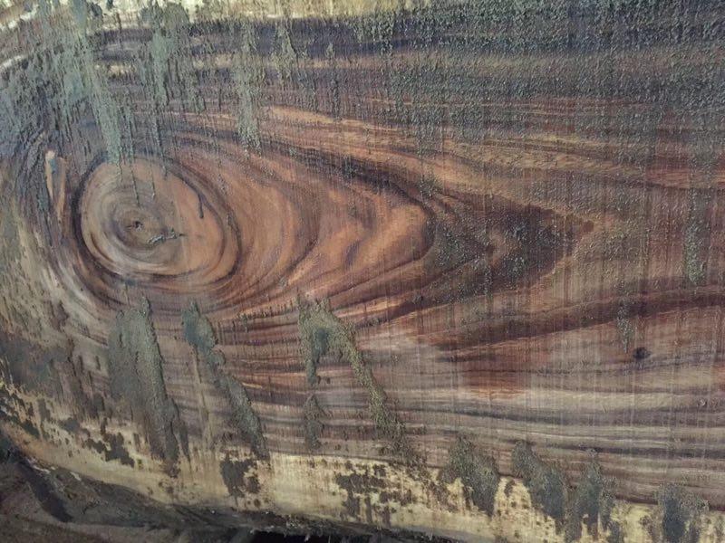 南美黑胡桃木