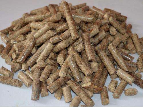 石龙生物质颗粒燃料-广东声誉好的生物质颗粒燃料供应商当属森海生物