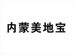 宁夏美地宝地坪装饰工程有限公司