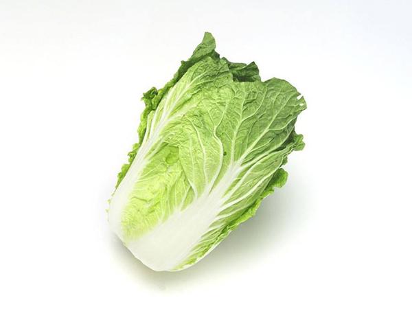 东莞蔬菜配送公司
