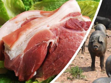 供应祝之山生态猪肉-山东诱人的生态猪肉供应
