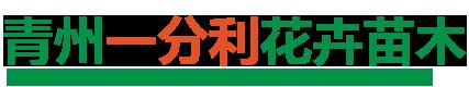 青州一分利花卉苗木