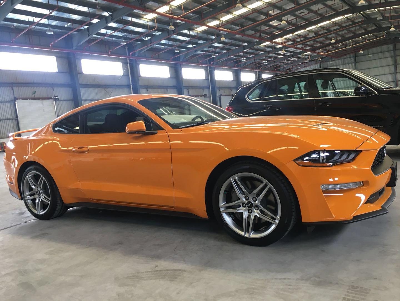 福特野马出售|买高质量的福特野马乘用车当然是到厦门莹隆汽车了