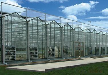 【行业正能量】玻璃温室大棚价格?天津智能连栋温室||