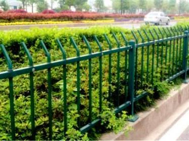 牢固的兰州绿化带护栏|优质绿化带围栏生产批发