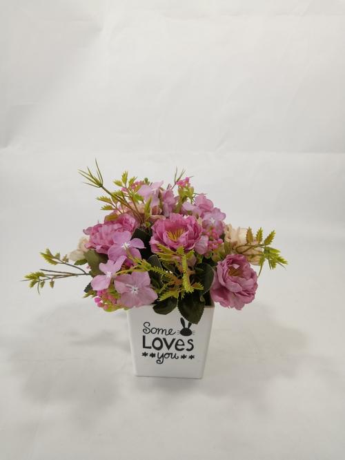 玛利亚玫瑰盆花