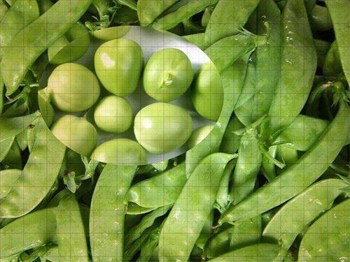 河南马铃薯淀粉价格|长期供应豌豆淀粉