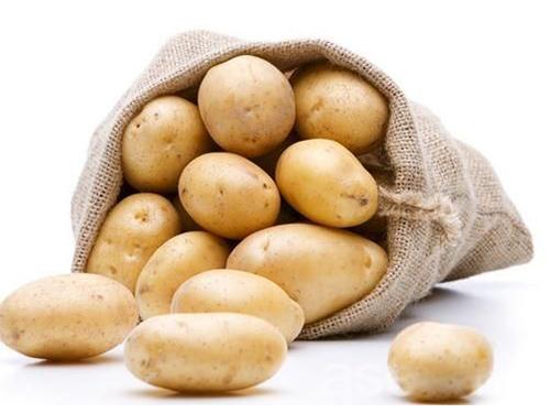 山东马铃薯淀粉生产厂家哪里好