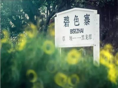 选云南最美秋景摄影团找图高文化传播——高端的云南摄影团