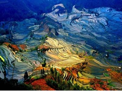 当地的云南摄影团|提供专业的云南最美秋景摄影团