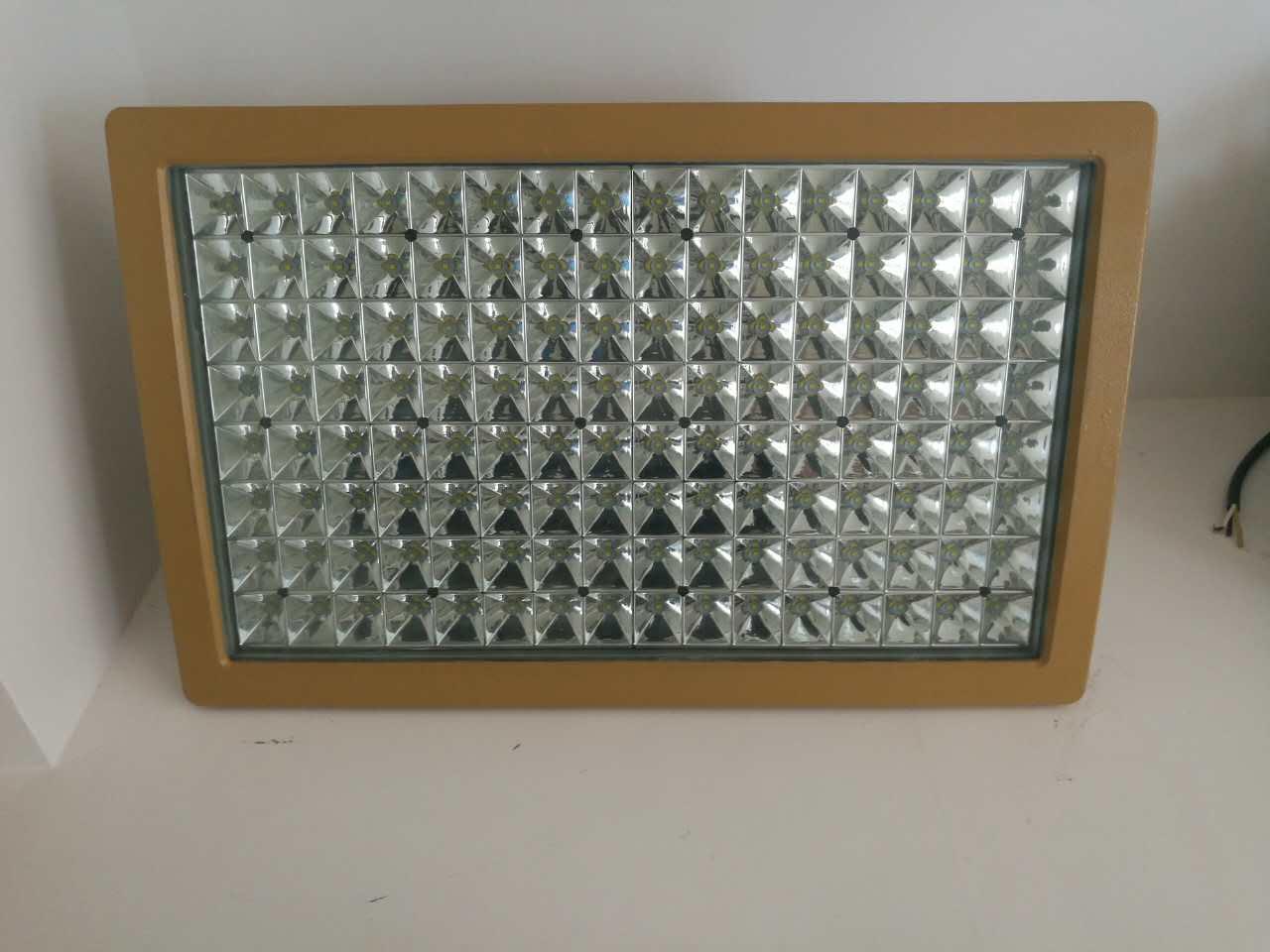 新黎明防爆免维护LED泛光灯-价格适中的防爆灯在上海哪里可以买到