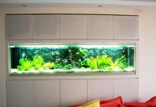 亚克力鱼缸厂家批发定做***生态亚克力鱼缸亚克力观赏鱼缸