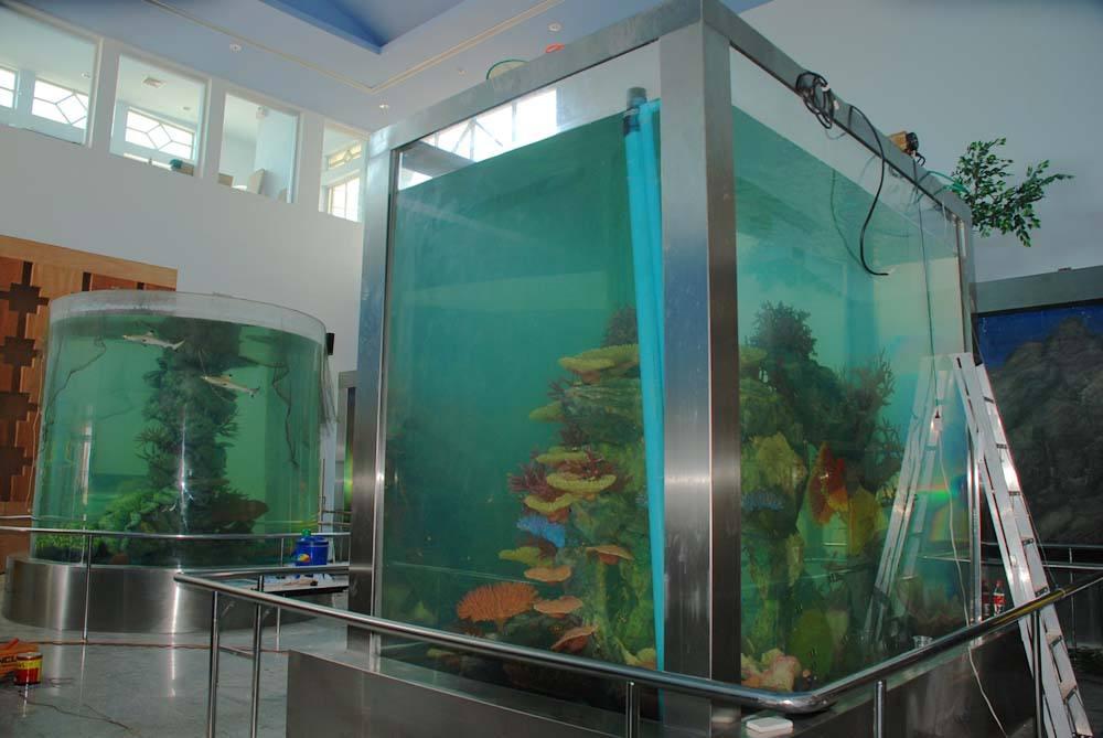 觀賞魚缸價格|大型魚缸價格行情