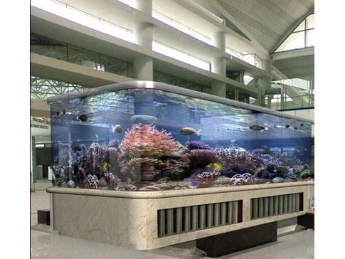 嘉兴亚克力圆柱管鱼缸厂-温州亚克力板材哪家好