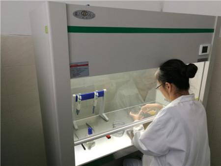 宁德公共卫生检测费用-鑫龙安专业提供卫生检测