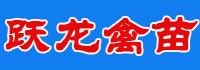 廣西躍龍禽苗孵化有限公司