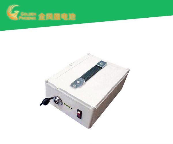 户外便携式锂电池-购买质量好的便携式电池优选金凤凰能源科技