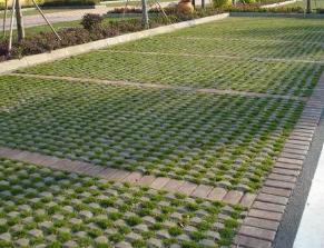 海口植草砖优质供应商当属路美彩砖——海口植草砖货真价实