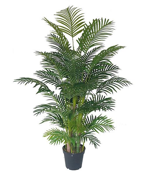 来绿韵工艺,买优良的仿真葵树|唐山仿真葵树